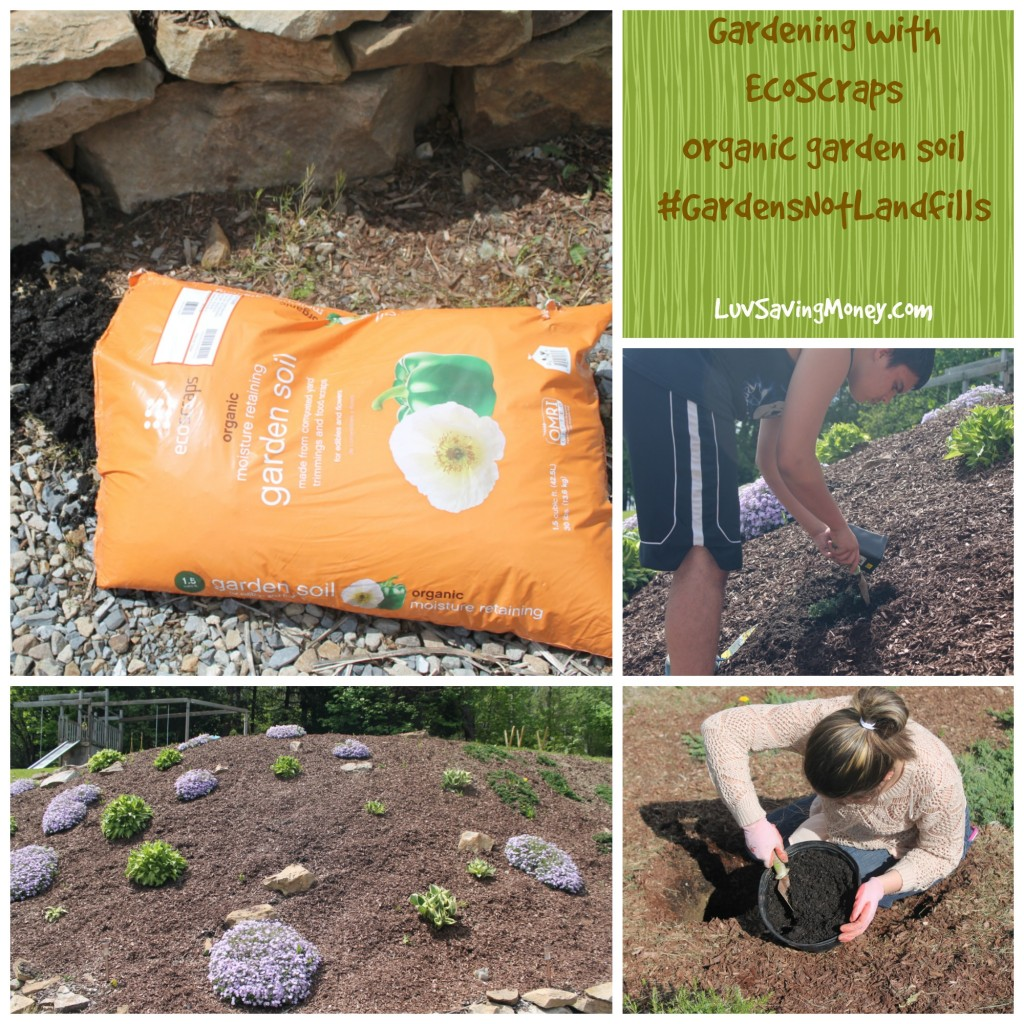 Creating Garden Spaces For Our New Home With Ecoscraps